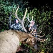 Dan-2021-Elk2