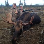 Jims Moose2
