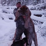 Cougar Hunting Guide in BC. Book a cougar hunt in BC.